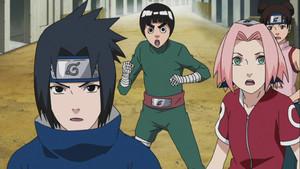 Sasuke, Lee, Sakura, Tenten.