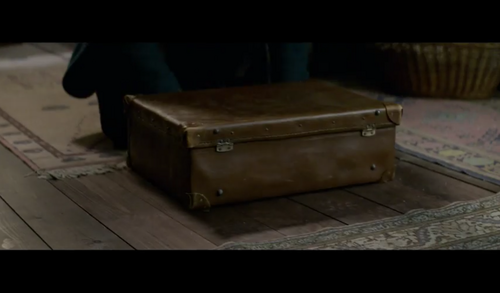 Fantastic Beasts and Where to Find Them fondo de pantalla probably containing a treasure chest titled Screencaps - Fantastic Beasts and Where to FindThem Teaser Trailer