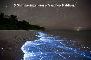 Shimmering shores of vaadhoo, Maldives