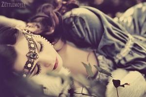 Người đẹp ngủ trong rừng