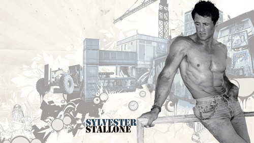 Sylvester Stallone wallpaper containing a naco, pedaço, hunk entitled Sylvester Stallone