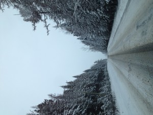 THE ROAD IS BEAUTIFUL IN THE WINTER!!!!!!!!!!!!!!!!!!!!!!!!!!!!!!!!!!!!!!!!!