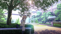 Tari Tari - anime photo