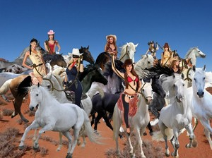 The Lone Rider and The Sexy mustango, mustang Cowgirls begin to tame Wild caballos
