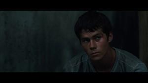The Maze Runner Screencaps