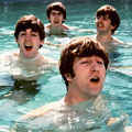 The Pool - the-beatles photo