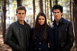 Vampire diaries episode 318 elena stefan damon
