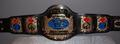 WCW Tag Teams Championship 带, 皮带 (1'st Generation)
