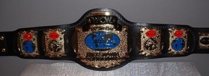 WCW Tag Teams Championship बेल्ट (1'st Generation)