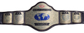 WCW 电视 Championship 带, 皮带