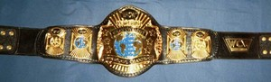 WCW World Heavyweight Championship बेल्ट