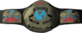 WCW World Tag Team Championship cinto, correia (2'nd Generation)
