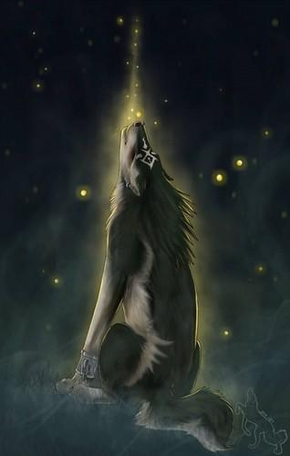 The Legend of Zelda Twilight Princess images Wolf Link HD