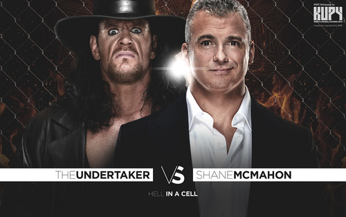 WWE kertas dinding with a chainlink fence entitled Wrestlemania 32 - Undertaker vs Shane McMahon