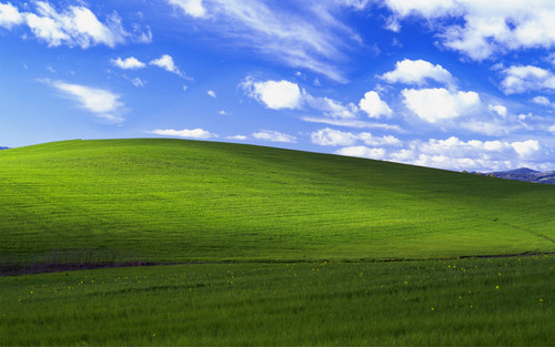 Random wallpaper containing a grainfield called XP Bliss