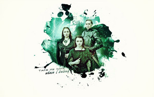 Sansa, Arya & Brienne