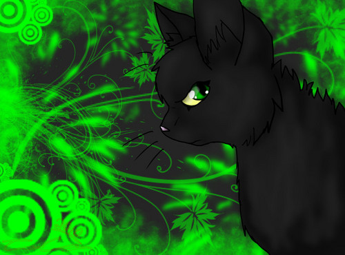WARRIOR CATS Wallpaper Possibly With A Sign Called Hollyleaf Redo By Icewolf910