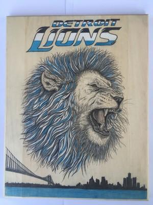 imageSetroit Lions