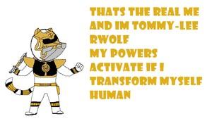 power rangers tommy lee