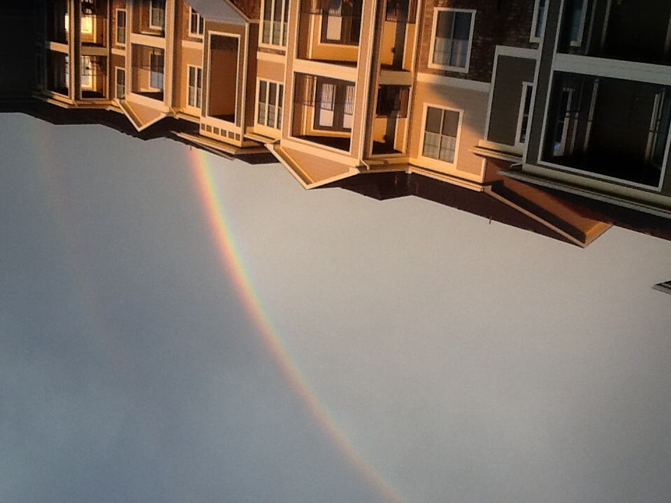 A live rainbow I just had to take a picture of
