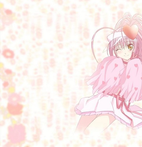 Shugo Chara wallpaper possibly containing a bouquet and a rose called Amulet Heart amu hinamori fan club 8664809