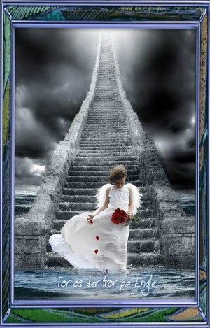 एंजल (and stairway to heaven)