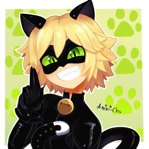 Miraculous Ladybug वॉलपेपर probably with a coffee break entitled Chat Noir