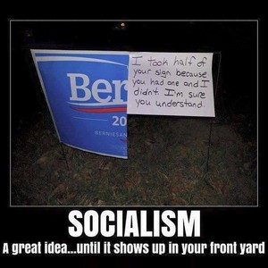 Comrade Sanders: Socialism