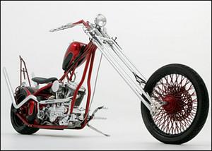 David Amore Bike