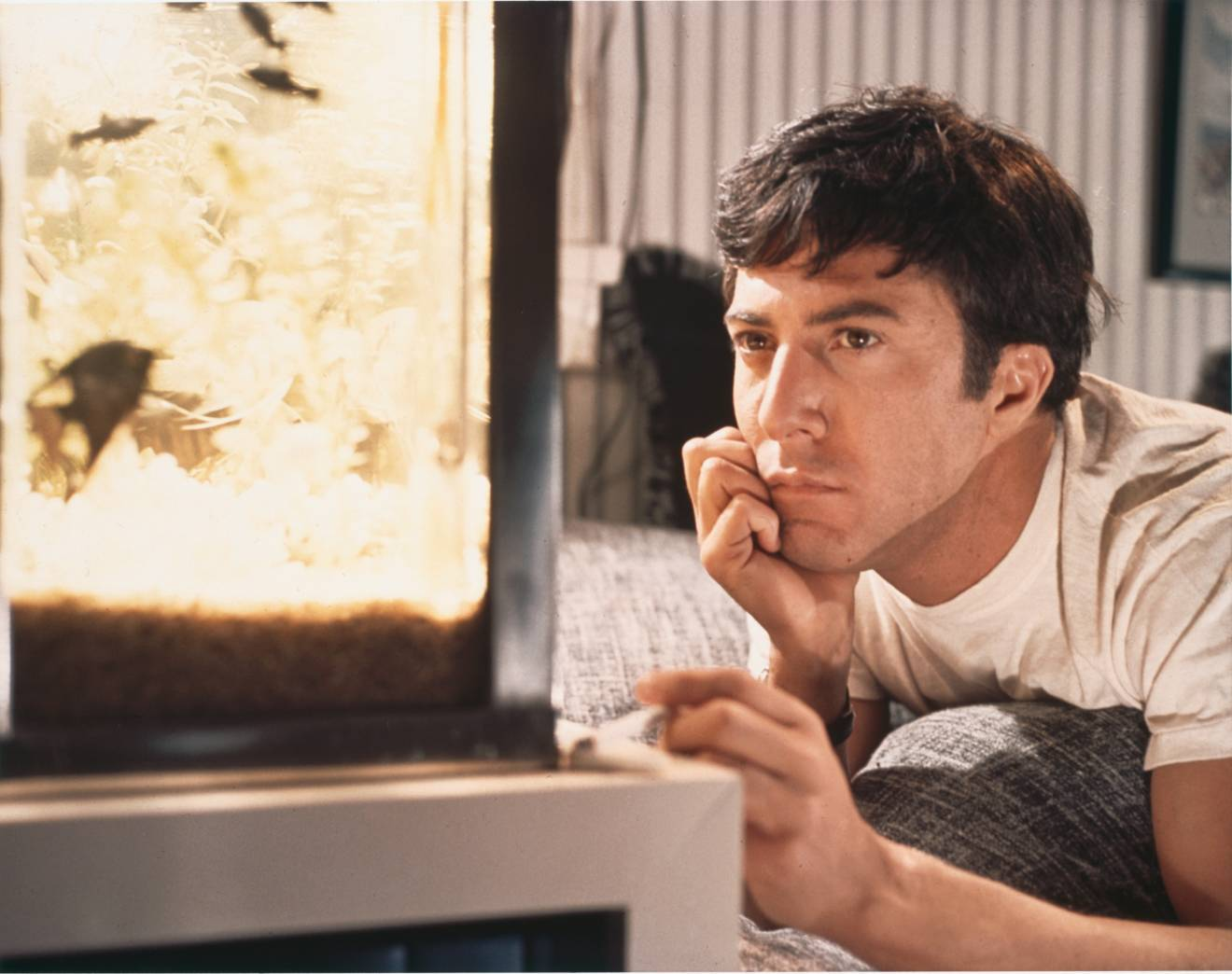the crisis of ben in the movie the graduate Start studying psu comm 150 final learn vocabulary what movie does fight club quote when tyler asks the narrator to hit him for the in the graduate.