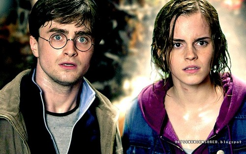 Hermione Granger wallpaper possibly with an outerwear, a box coat, and a well dressed person entitled Emma and Daniel