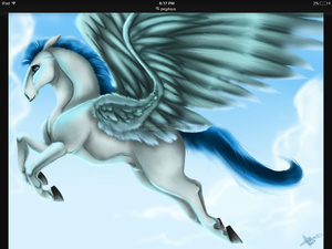 Hercules' Pegasus grown up