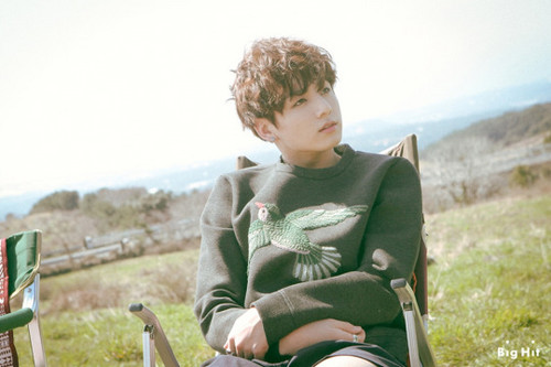 Jungkook (BTS) پیپر وال probably with a barrow titled Jungkook | Young Forever photoshoot