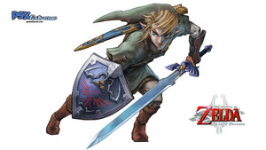Link in Twilight Princess