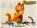 Movie Wallpaper - garfield wallpaper