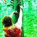 Outlander Icons - outlander-2014-tv-series icon