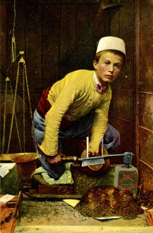 Painting of an 12 साल old Albanian boy working in traditional cloths
