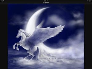 Pegasus door the moon