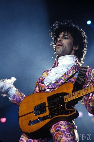 Prince wallpaper with a guitarist and a concert called Prince Rogers Nelson