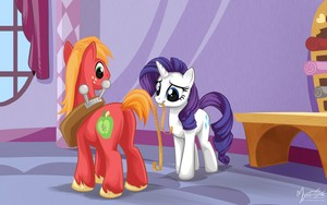 Rarity Measuring Big Macintosh