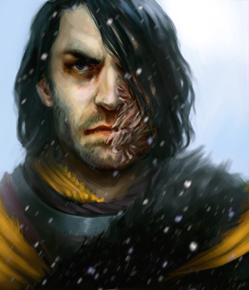 http://images6.fanpop.com/image/photos/39500000/Sandor-Clegane-a-song-of-ice-and-fire-39558071-500-582.jpg