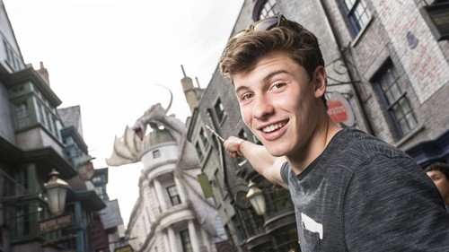Shawn Mendes 壁紙 with a 通り, ストリート entitled Shawn at the Harry Potter world
