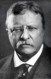 The Presidents of The United States wallpaper with a business suit entitled Theodore Roosevelt