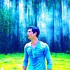 The Maze Runner Foto possibly containing a douglas fir, a ponderosa, and a mountain hemlock entitled Thomas (The Maze Runner)