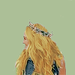 candice ♡ - candice-accola icon
