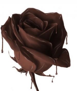 cokelat mawar
