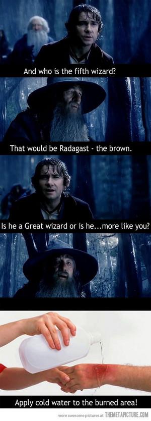 funny The Hobbit Gandalf Wizard