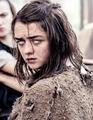 Arya Stark - game-of-thrones fan art
