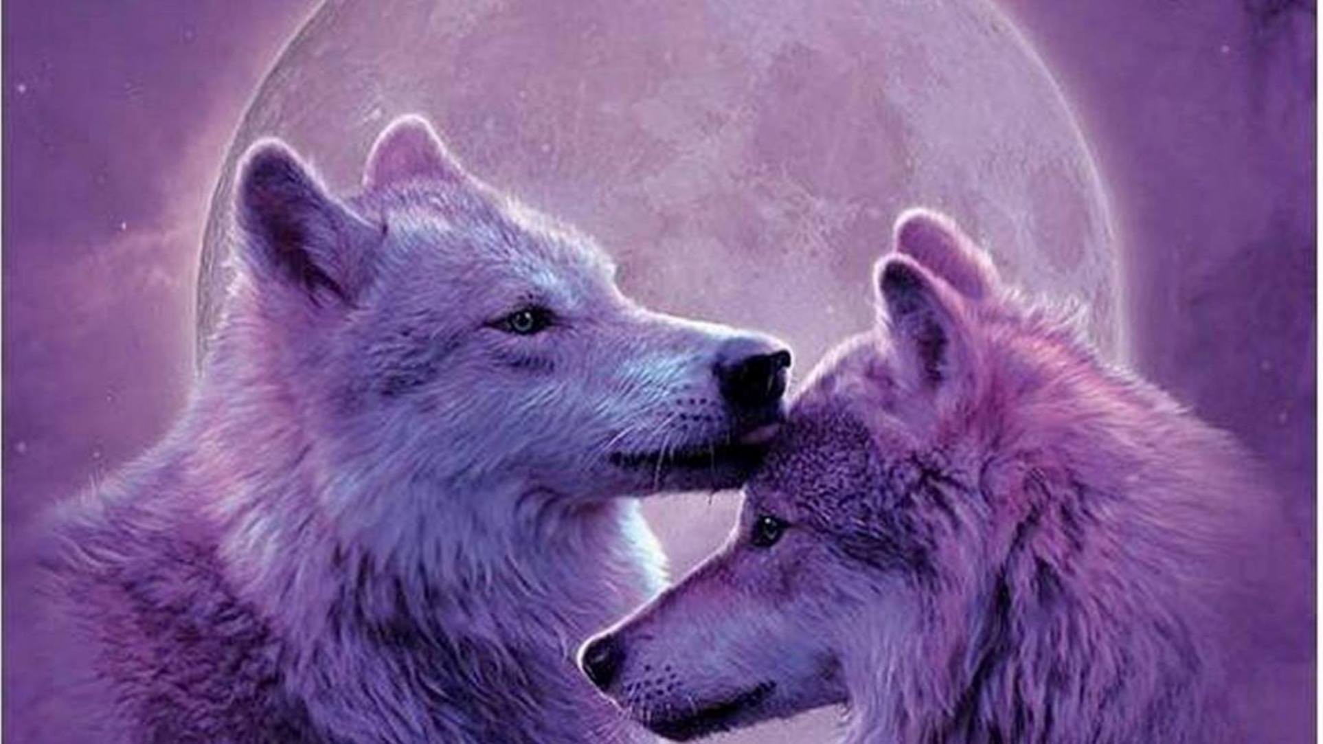 other moonwolves lobos animais painting moon nature lobo 53 pictures