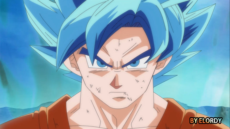 *Goku : Super Saiyan God*